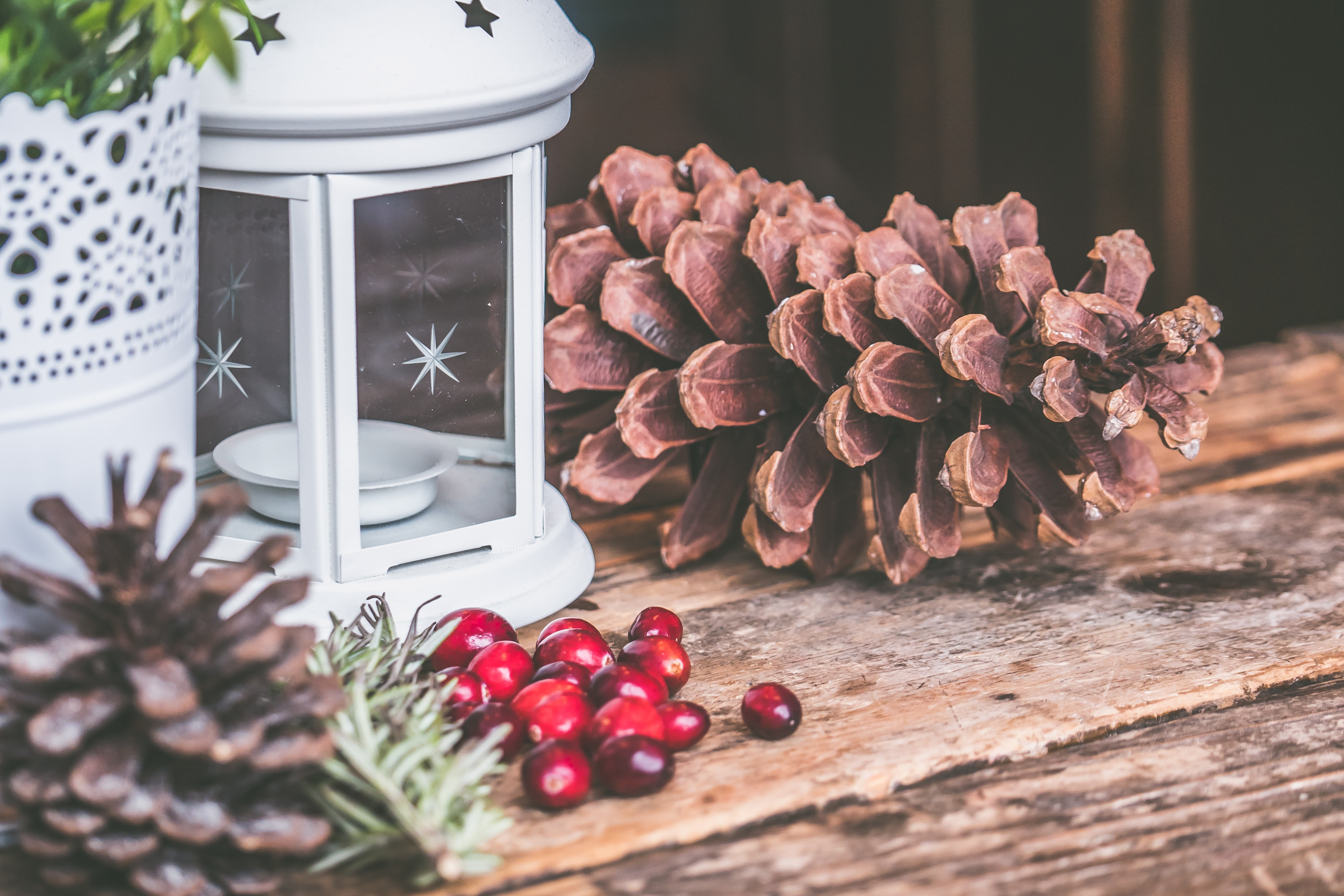 Holiday Season Marketing Tips for Galleries